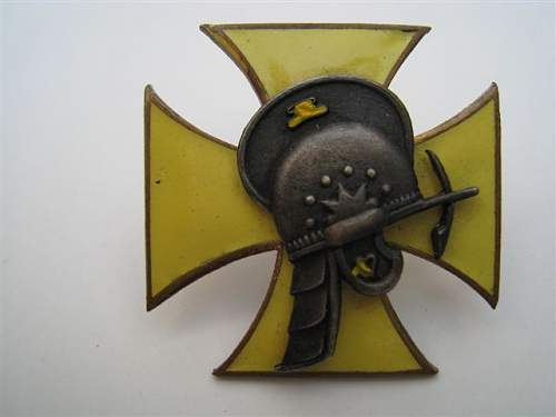 Polish Regimental Badges WW2