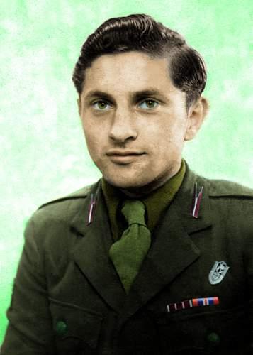 Polish Army uniform colour help