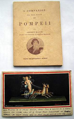 Anyone have pictures of Polish soldiers touring Pompeii  1944?