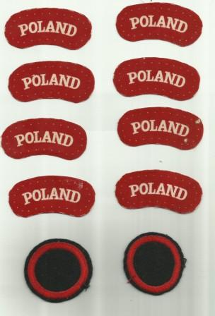 Help requested about Polish Para Antoni Paszkiewicz & Showcase of his Badges