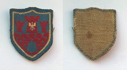 Uniform Unit Insignia of the Polish Army in Exile - 1939-45/7