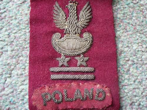 Polish cap insignia & div sign