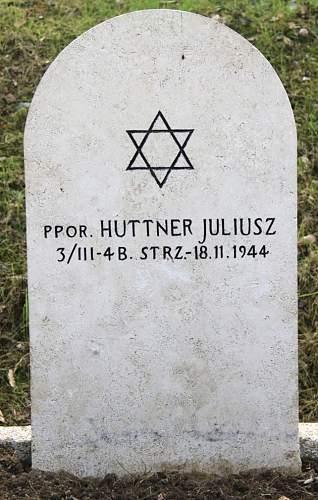 Click image for larger version.  Name:Ppor Juliusz Huttner 4BSK MCC 5198.jpg Views:22 Size:199.6 KB ID:837932