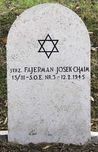Click image for larger version.  Name:Strz Chaim Josek Fajerman SOE Nr 3 MCC 41505.jpg Views:18 Size:189.9 KB ID:837938