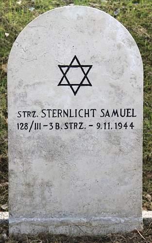 Click image for larger version.  Name:Strz Samuel Sternlicht 3BSK  MCC 12582.jpg Views:37 Size:206.0 KB ID:837941