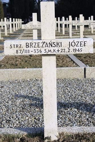 Click image for larger version.  Name:Strz Jozef Brzezanski MCC 45889.jpg Views:15 Size:109.2 KB ID:839063