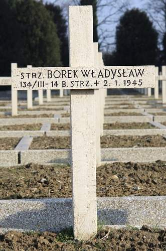 Click image for larger version.  Name:Strz Wladyslaw Borek 14BS MCC 16269.jpg Views:12 Size:154.5 KB ID:839069