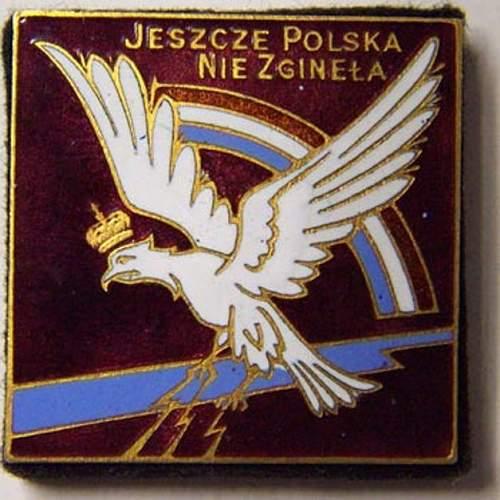 Polish Sqwadron Badge (Group de chasse I/145 Varsovie )