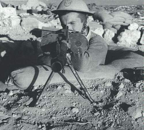 Click image for larger version.  Name:#Polish Tobruk Rat.JPG Views:11 Size:82.8 KB ID:870344