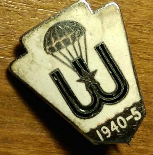 Unknown WW2 parachute pin Polish / French SOE , 1940 /45 ?