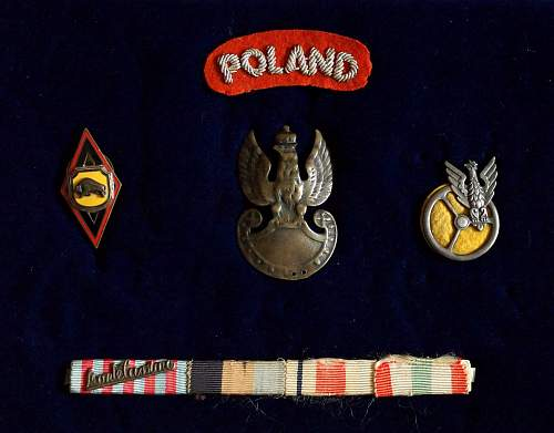 Lets see your Polish Militaria Display!