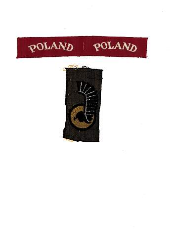Polish 1st Armoured Division Patches