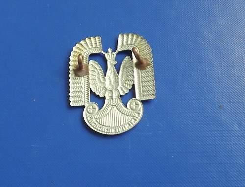 Polish Air Force eagle