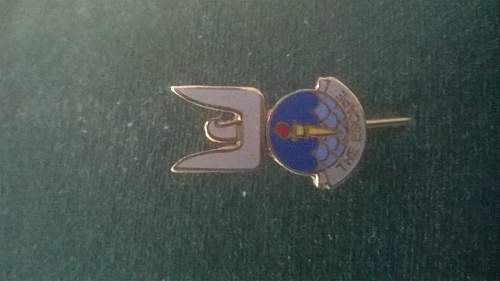 Arnhem escapers tie pin numbered