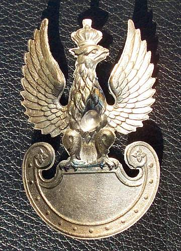 Click image for larger version.  Name:Bialkiewicz Eagle PSZnZ rev.jpg Views:1153 Size:239.1 KB ID:9679