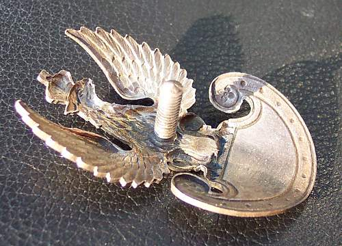 Click image for larger version.  Name:Bialkiewicz Eagle PSZnZ side.jpg Views:594 Size:196.8 KB ID:9680