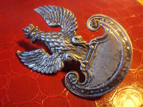 polish forces in the west lead cap badge