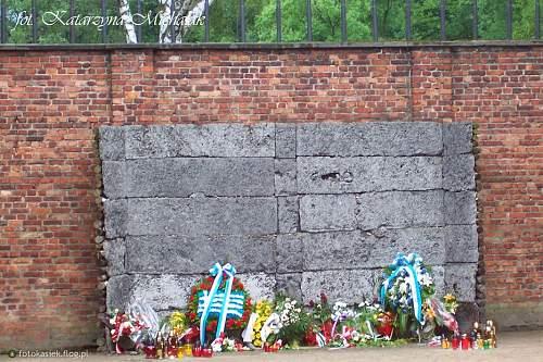 Dr Adam Greplowski murdered in Auschwitz, shot in front of Wall of Death.