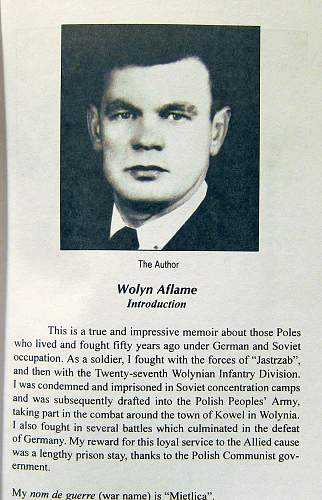 Click image for larger version.  Name:Wolyn Aflame (2).jpg Views:140 Size:215.6 KB ID:274538