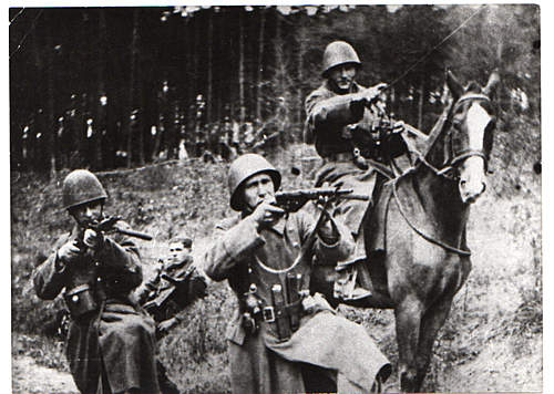 Click image for larger version.  Name:Peasant-Battalion018.jpg Views:1140 Size:56.1 KB ID:393623