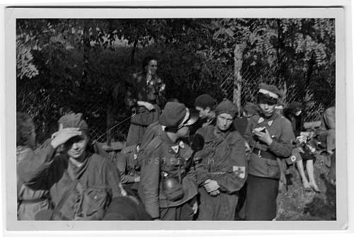 Click image for larger version.  Name:Scouts-Medics-ww2037.jpg Views:99 Size:137.5 KB ID:706632
