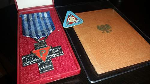 Auschwitz Cross - Also need help identifying pin.