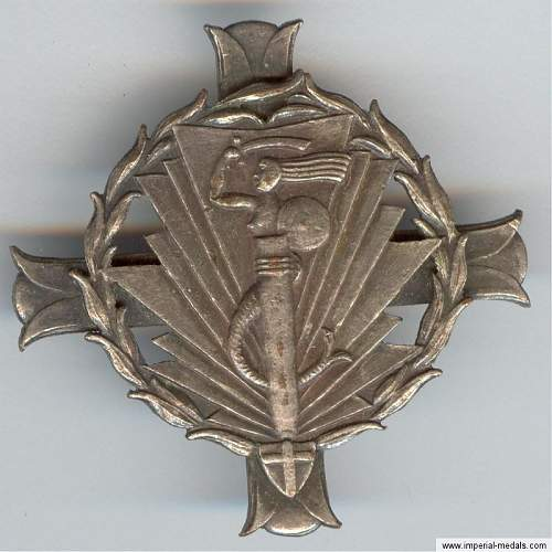 Is this a badge of the 2nd Warszawski Signals Battalion?