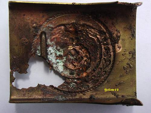 SA buckle and roundel from fundus