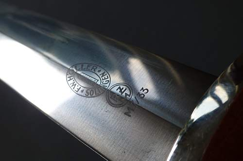 Transitional Holler SA dagger