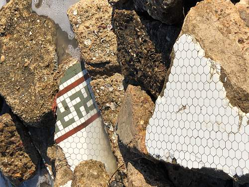 Relics From The Gulf of Mexico