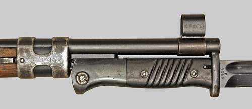 torn bayonet