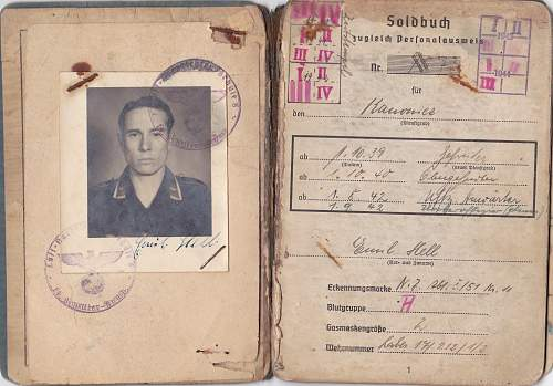 Wehrpass - Luftwaffe translation and how to valuate?