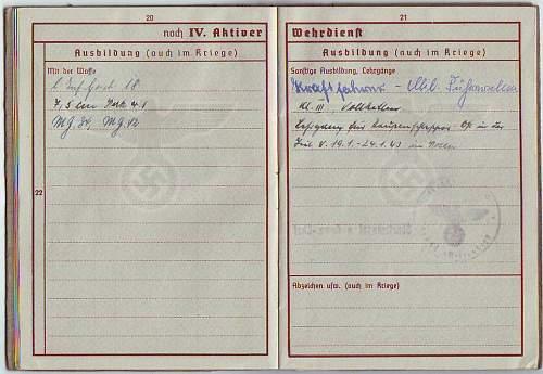 263 Pz.Jg.Abt RSO Wehrpass