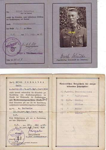 Fuhrerschein & Fahrlehrerschein Art. reg 818 (mot)