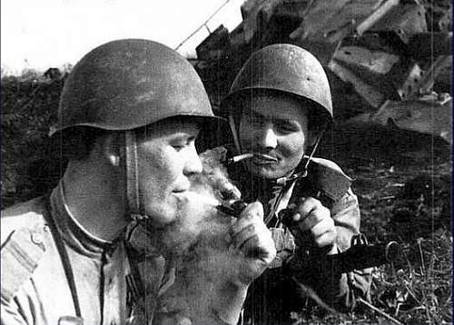 Click image for larger version.  Name:1467215266-battle-of-kursk-in-pictures-ww2-eastern-ostfront-russian-front-009.jpg Views:285 Size:88.0 KB ID:975266