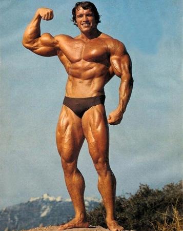 Arnold Schwarzenegger or Lebedev?