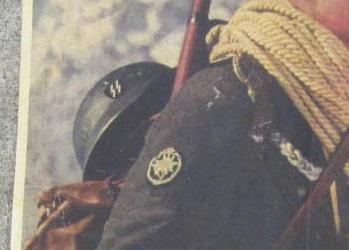 Prinz Eugen SS volunteer helmet decal