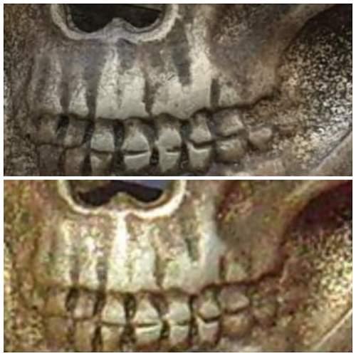 skull rzm 1/52