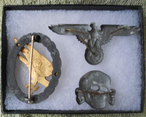 ss skull and eagle + FJ paratroopers badge