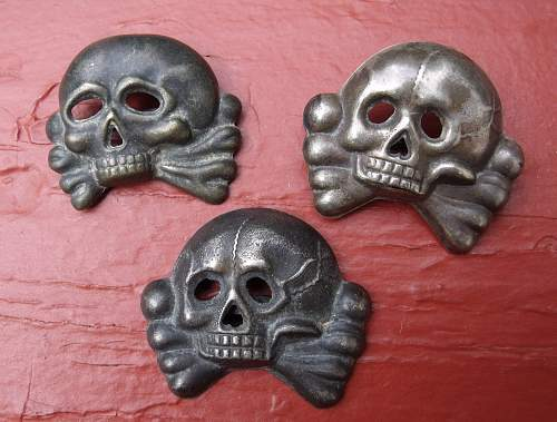 Early Skull