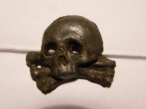 Skull from  my collection