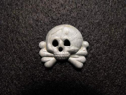 Skulls I collected from the late 70's
