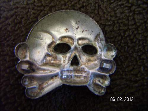 Jawless skull: opinions please
