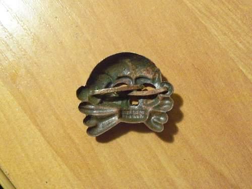 Dzanzige typer skull