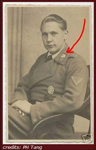 Click image for larger version.  Name:On Panzercollar 1A - Chris.jpg Views:58 Size:51.6 KB ID:755780