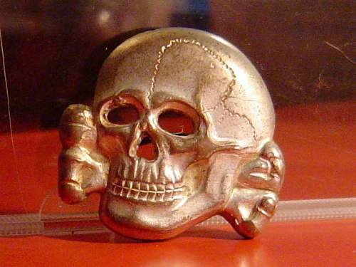 Zimmermann marked RZM 499/41 skull