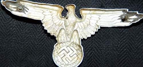 Copy SS  eagle