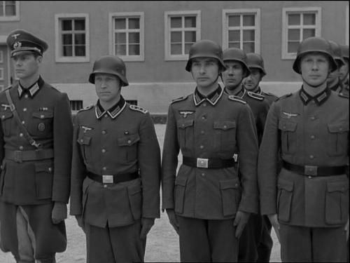 Waffen-SS M40 & M43 tunics dates of introduction!!!