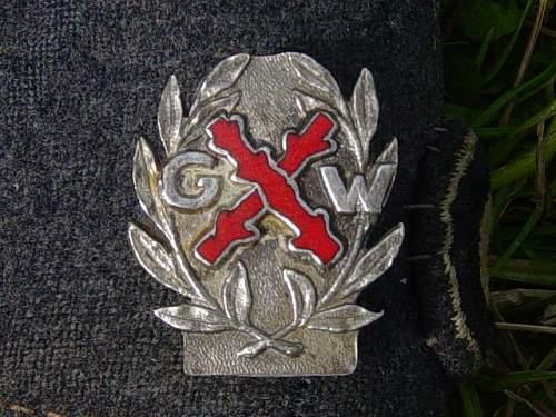 Gardes Wallonnes lapel badge