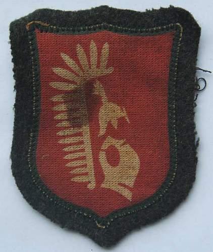 Foreign volunteer shield ?